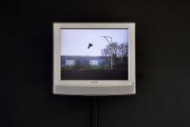 David Michael Clarke, Flying Black cow - l'origine, vidéo instantanée 4/3, sonore, 2012. Vue de l'exposition: Flying Black Cow Utopia Club. Galérie du Dourven. Trédez-Locquémeau. 2014. Photo: Hervé Beurel.