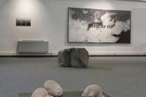 Vue de l'exposition 'Madame Orain et le Coco Paimpolais'. Salle du Temple. Artothèque de Vitré, 2019. © ADAGP Paris 2019 / David Michael Clarke.